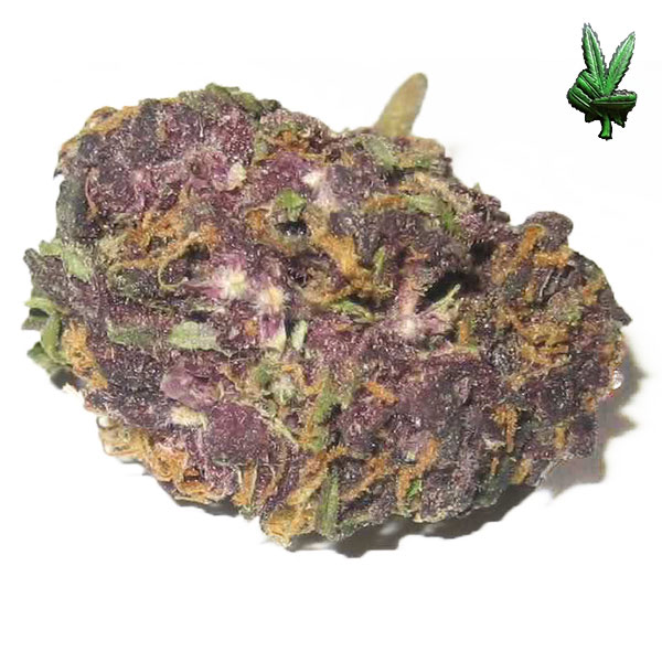 1 Ounce Grandaddy Purple (Indica)