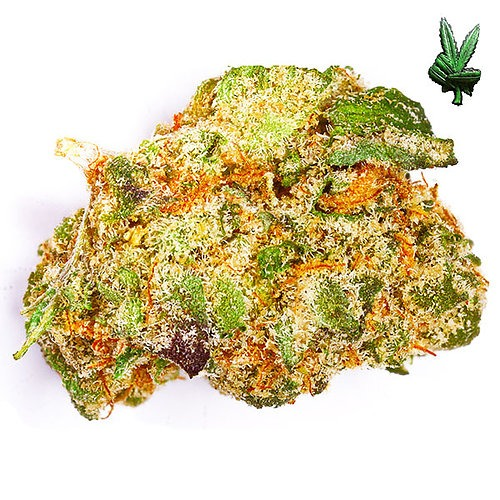 1 Ounce Girl Scout Cookies (Hybrid)